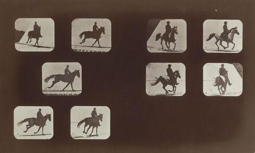 eadweard-muybridge-01