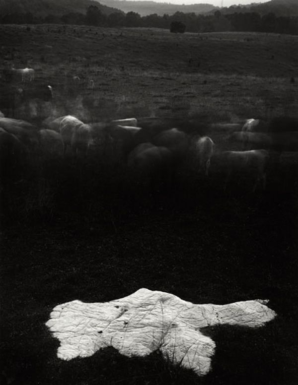 sally-mann-14